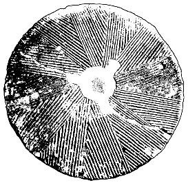 Millstone vinyl